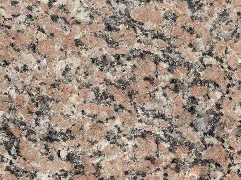 Rosalia Dark Granite
