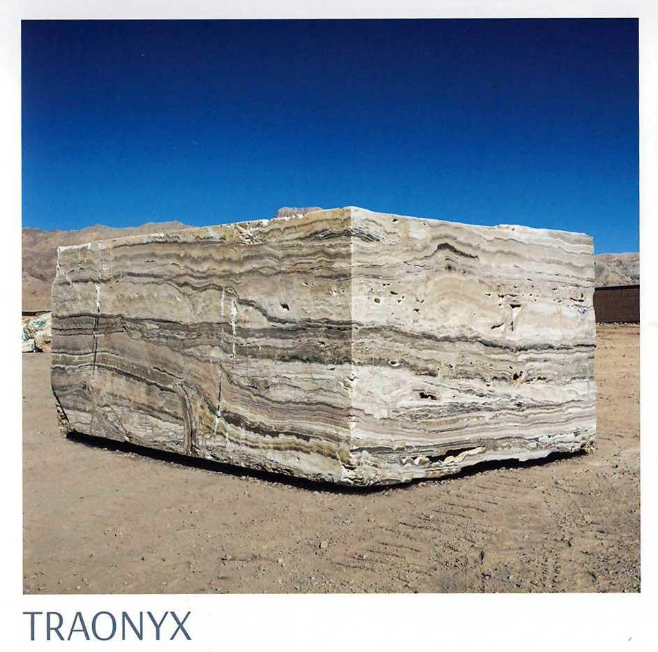 Traonyx