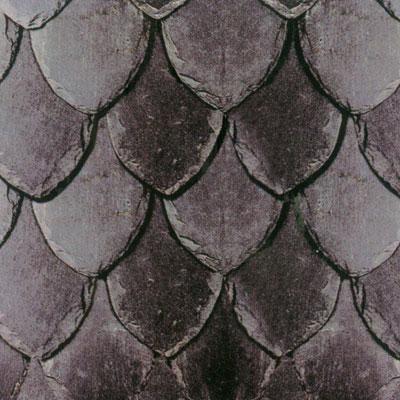U shape roof slate