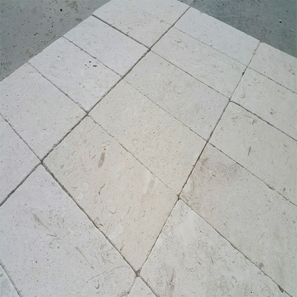 Fossil Limestone Tile From Turkey