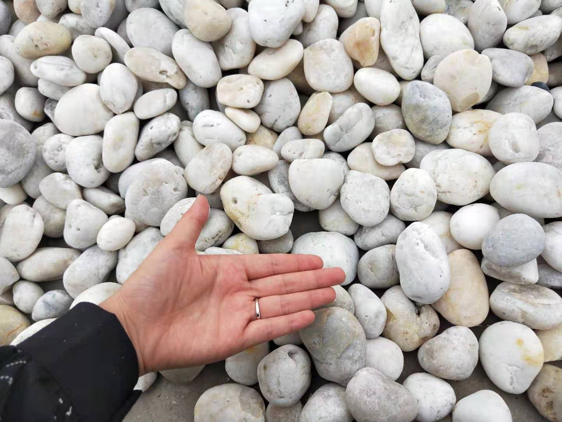 White pebble stone polished cobble stone for landscaping and garden