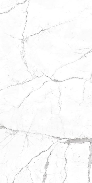calacata Pearl Ceramic tiles