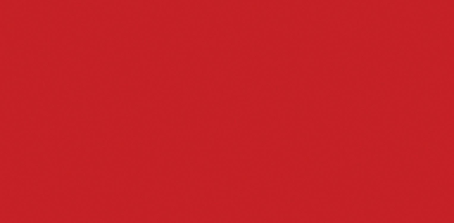 CHILLI RED QUARTZ SLABS