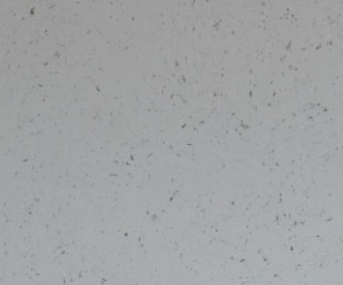 cloudy white Quartz