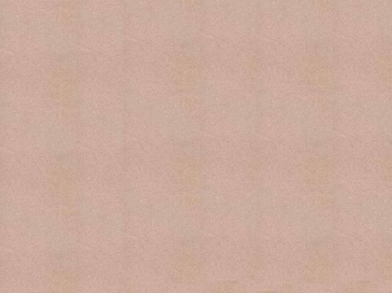 Dholpur Beige Honed 01 Sandstone