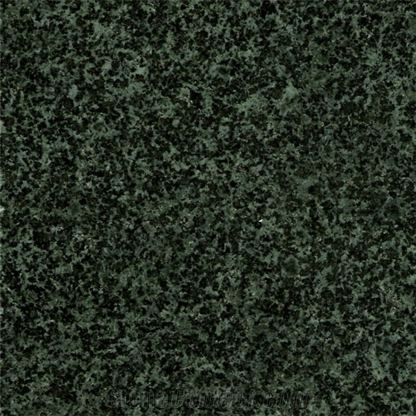 Natural Ever Green Granite Slabs Premium Choice for High Grade Gardening Forests Engineering