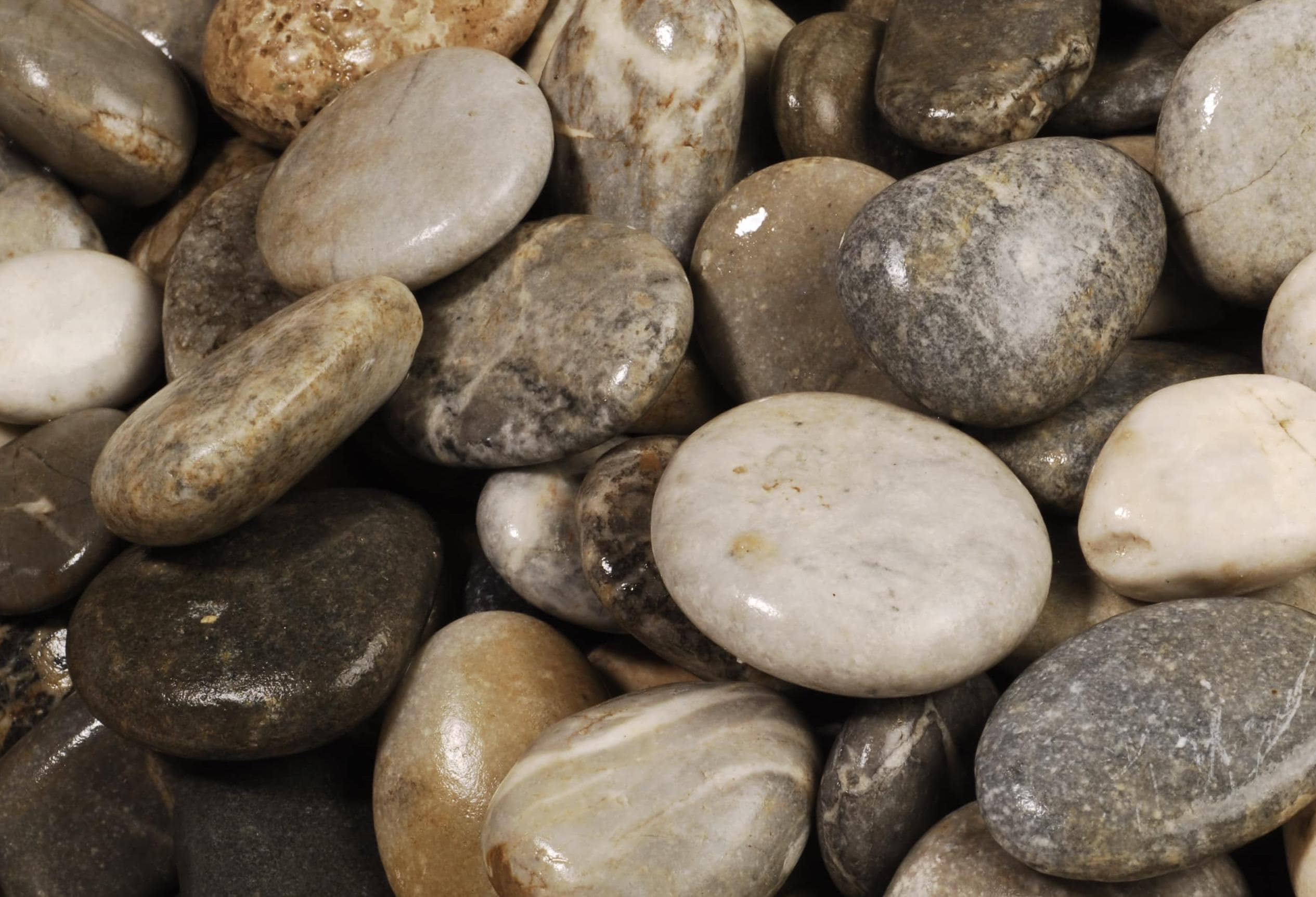 Natural Pebbles Flouray Grey River Pebbles