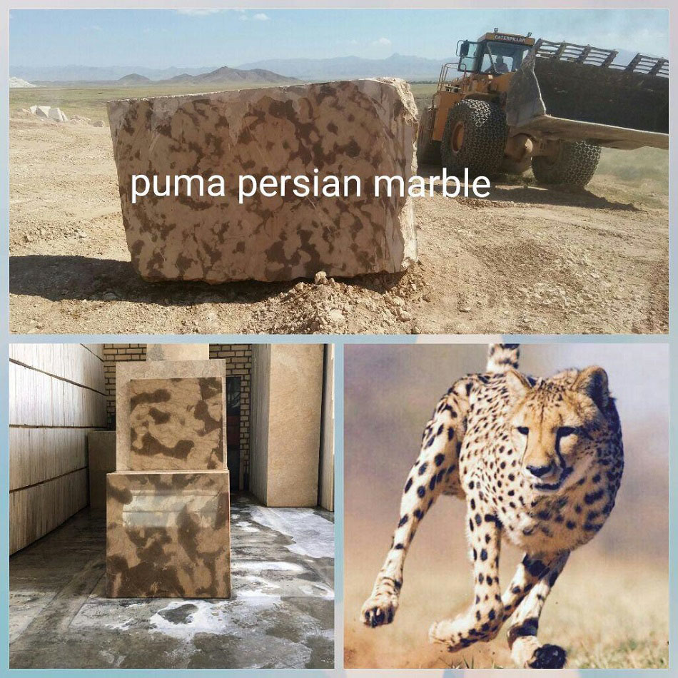 Cheetah Persian Marble