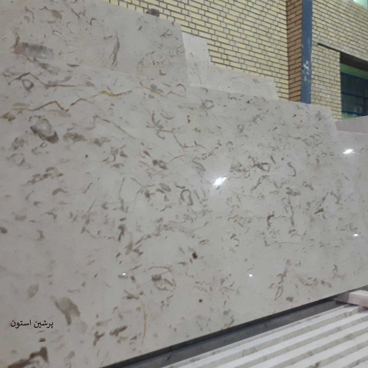 fossil marble stone