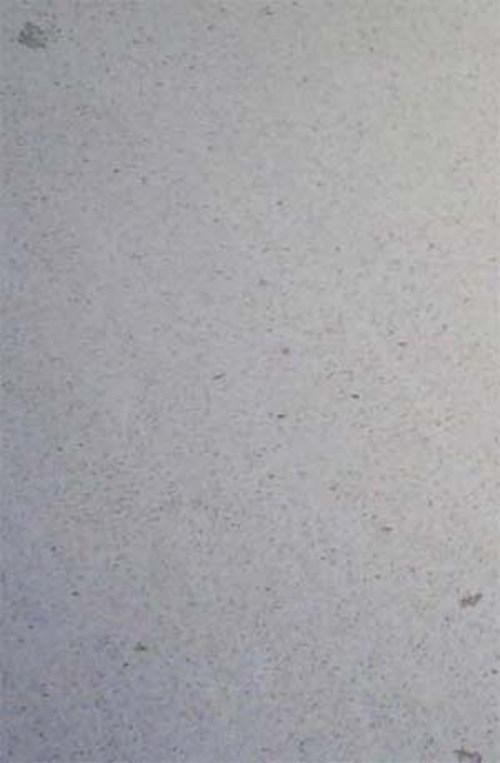 White Sandstone Paving Tiles & Slabs White Palimanan Sandstone Tiles Indonesia Sandstone Exterior Floor Tiles