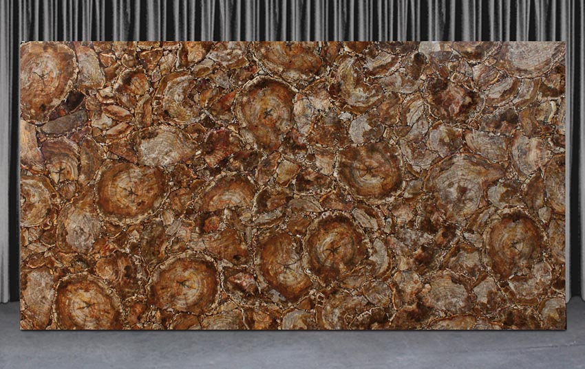 Petrified Wood Stone Slabs