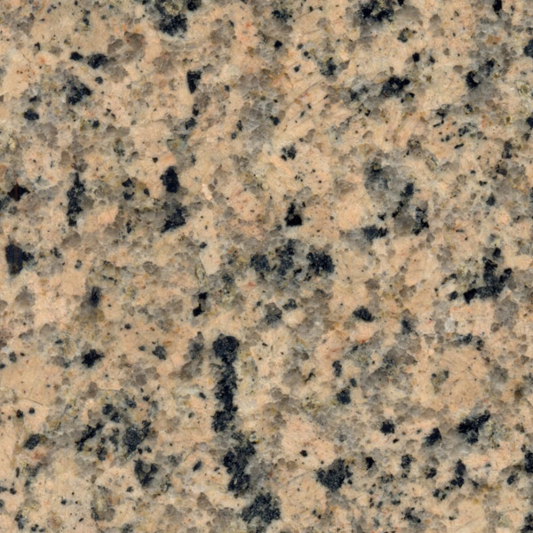 Panther Yellow Granite